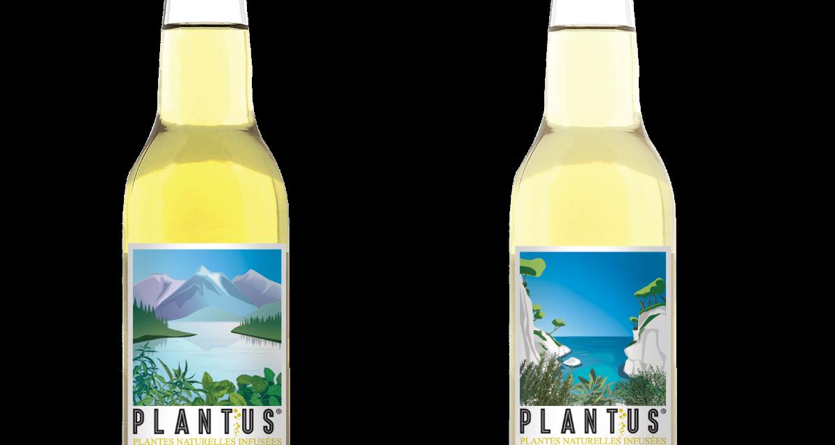 Plantus : Plantes Naturelles INFUSÉES