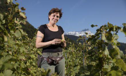 Anne Muller Le Vin Yvorne Bio