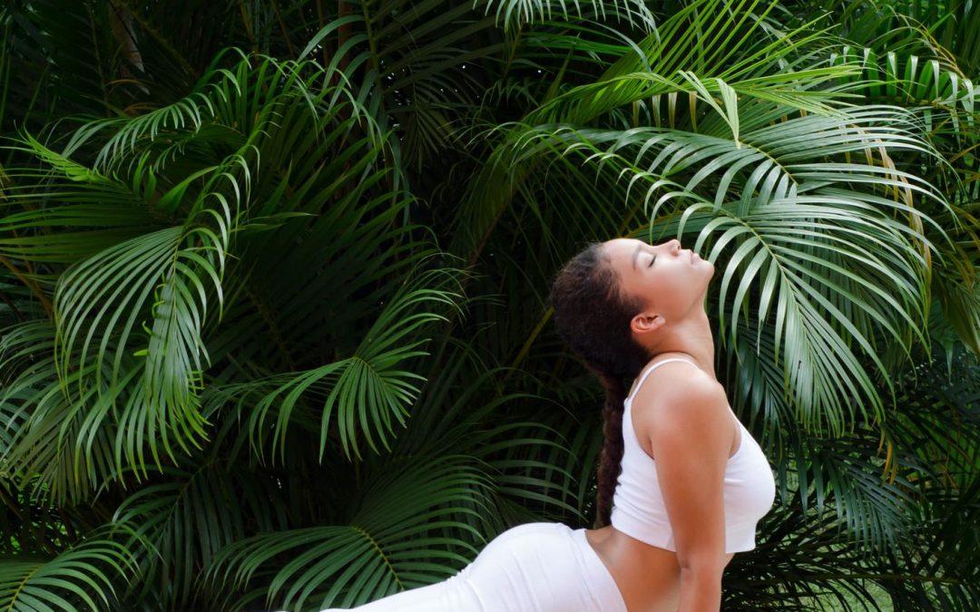 Détoxinez votre corps par le yoga